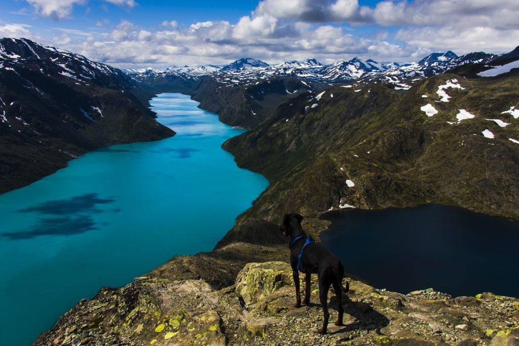 Po hřebeni Besseggen vede nejvyhledávanější treková trasa v Norsku.