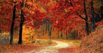 podzimni-vylety